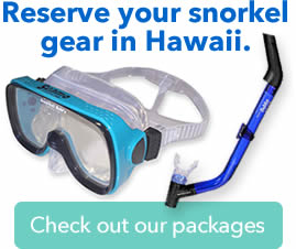 snorkel gear hawaii