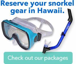 reserve snorkel gear