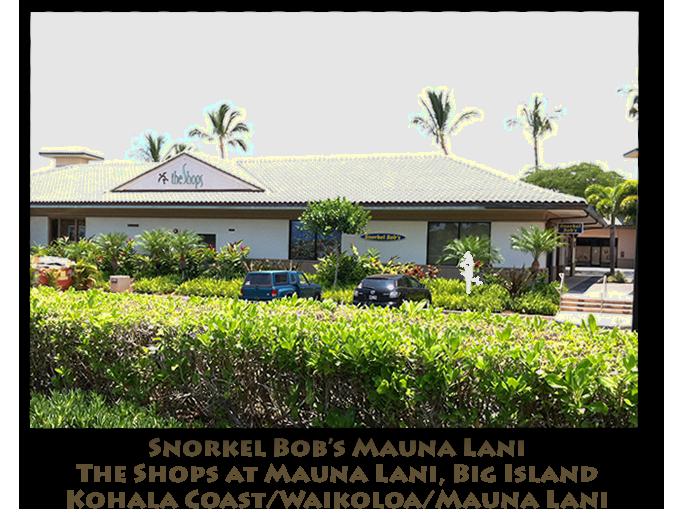 Big Island Snorkel Gear Rentals | Hawaii Activity Reservations