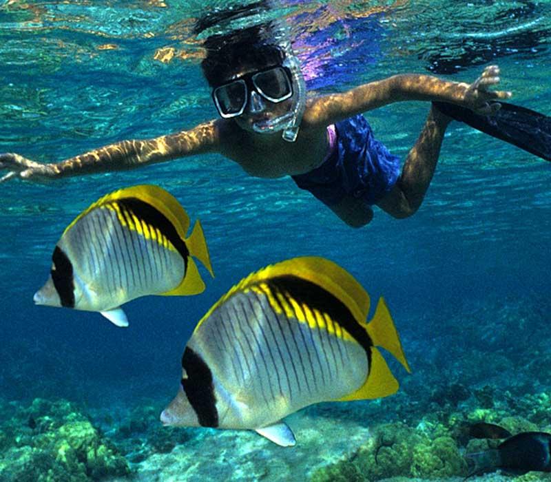 Fair-Wind-Boy-Snorkeling