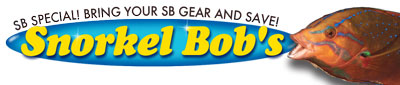 Save when you bring Snorkel Bob Gear