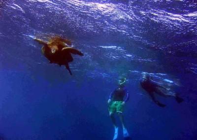 kauai_sea_riders6