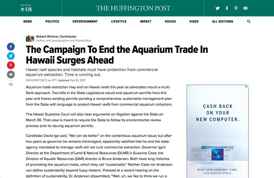 aquarium campaign