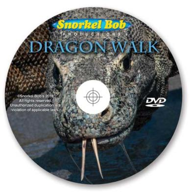 dragon walk the movie