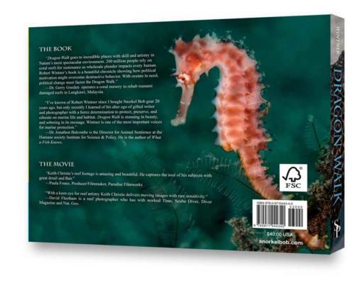 dragon walk the book