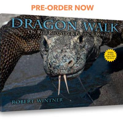 dragon walk the book